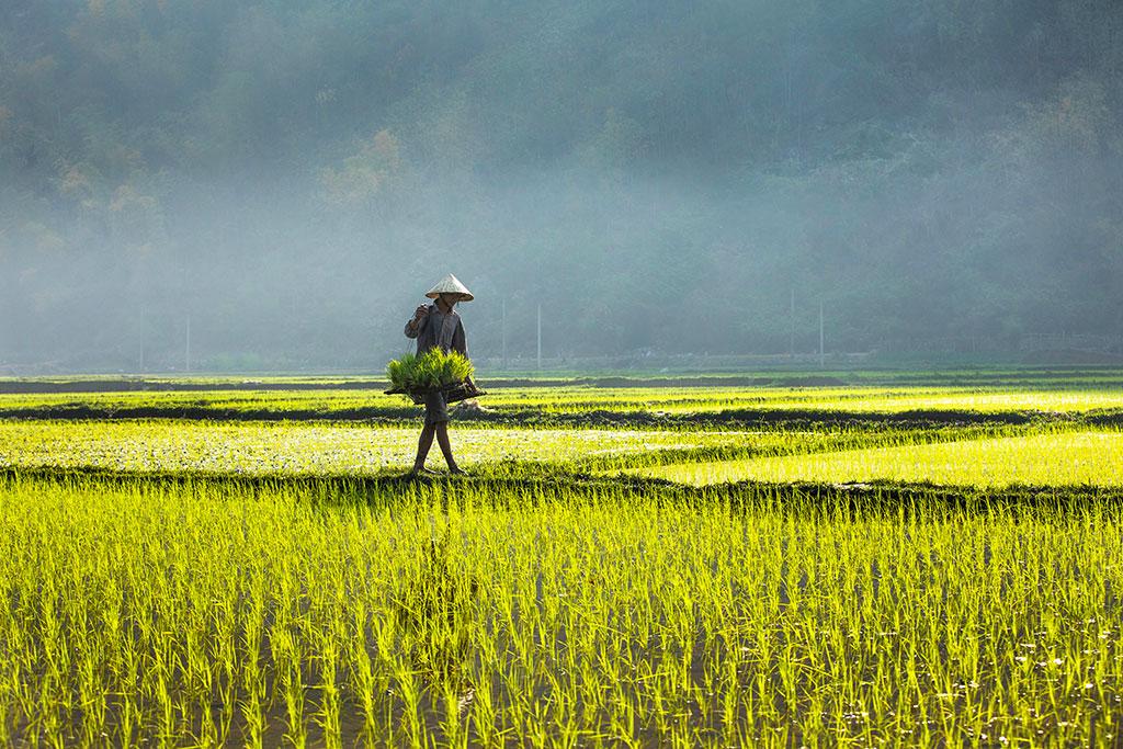 Morning in Mai Chau II photo by Réhahn Vietnam